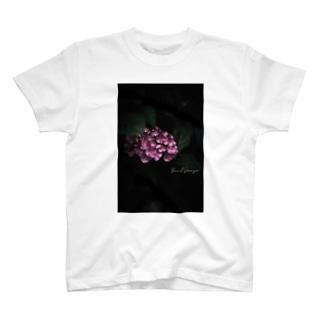 【花途夢】紫陽花 ph data./2020.5.29 T-shirts