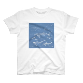 Mainly sharks collection T-shirts