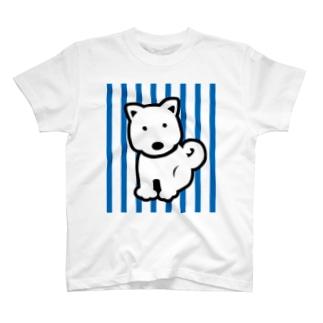 わんわんストライプ青 T-shirts