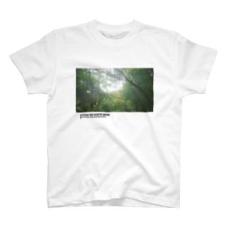 もうそれは草超えて森 T-shirts