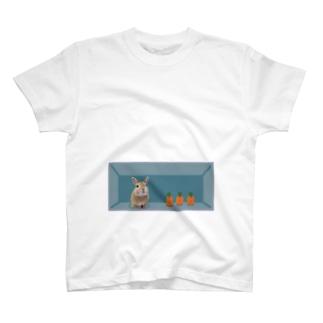 おなかに暮らすうさ Ⅳ T-shirts