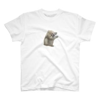 忘れられないぜ過去の栄光(透) T-shirts