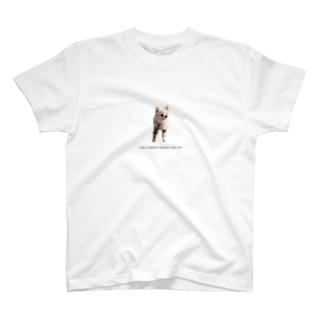 お散歩ちぃちゃん T-shirts
