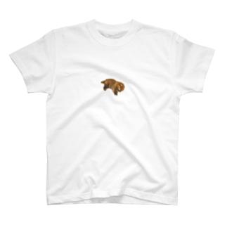 ねてる赤ちゃんポメラニアン  T-shirts