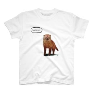 泳ぎたいヤブイヌ T-shirts