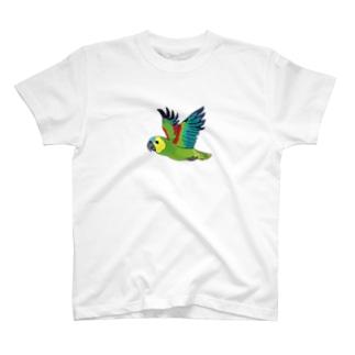 アオボウシインコ T-shirts