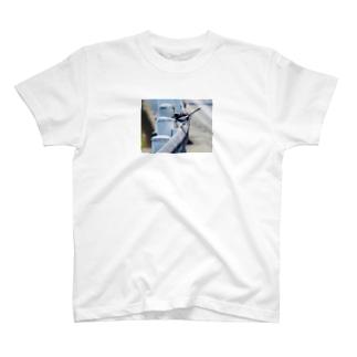 ハクセキレイ フォトT T-shirts