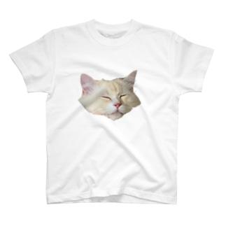 うちのねこ T-shirts