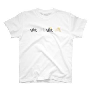 オカメインコ定点観測の並ぶモフ オカメインコ T-shirts
