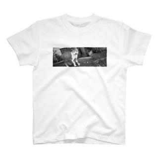 ねこ師匠2(モノクロ) T-shirts
