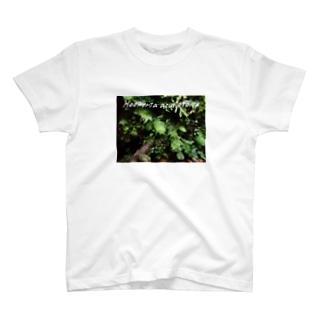 アブラゴケ フォトT T-shirts