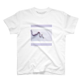 pastel snake T-shirts