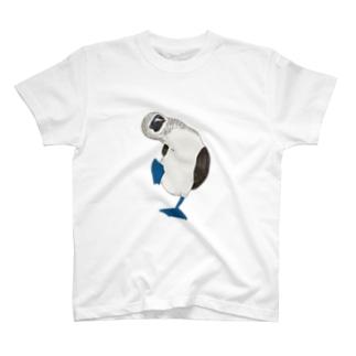 アオアシカツオドリの雄 T-shirts