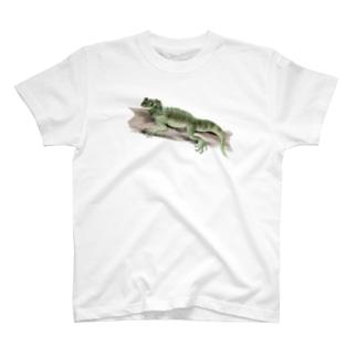 Animals シリーズ 〜フィリピンホカケトカゲ〜 T-shirts