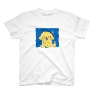 もふもふゴールデンレトリバー T-shirts