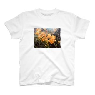 黄色いお花のものがたり T-shirts