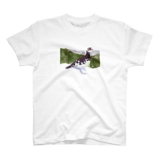 ライチョウ T-shirts