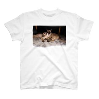 スキャンダル T-shirts