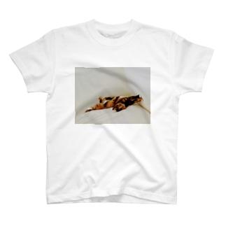 いろつきかべぽん T-shirts
