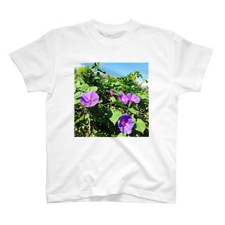 夏の花 T-shirts