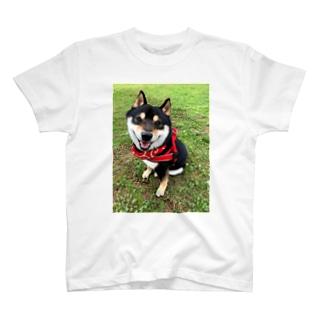 おすわり黒柴 T-shirts