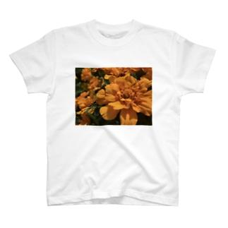 マリーゴールドcolor T-shirts