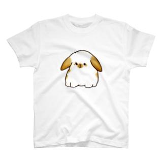 ちょっと不機嫌なホーランドロップ(ブロークンオレンジ) T-shirts