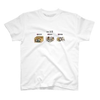 3密にゃんこ T-shirts