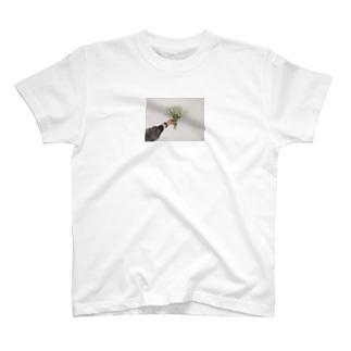 いつかのかすみ草ちゃん T-shirts