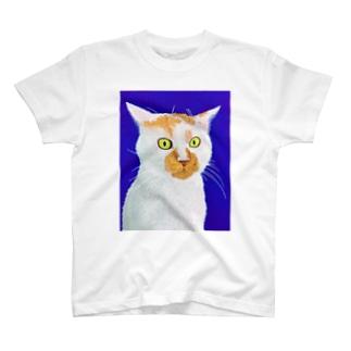 Cat 9  T-shirts