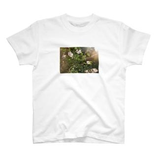春の匂い T-shirts