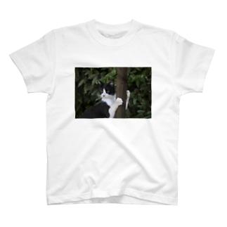 ミンツ君柱につかまって T-shirts