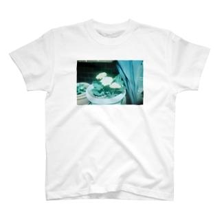 お花Tシャツ2 T-shirts