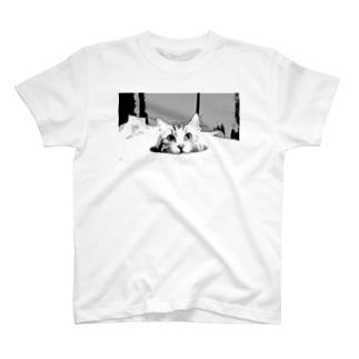 ちぃ T-shirts