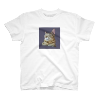 おひるねきじとらねこ T-shirts