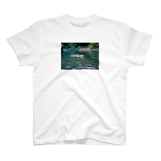 泳ぐ犬 T-shirts