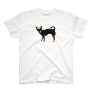 可愛すぎる犬 T-shirts