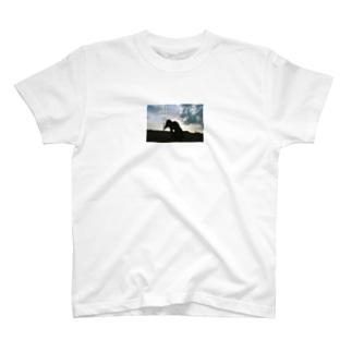 see T-shirts
