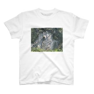 ヤマノキズ T-shirts