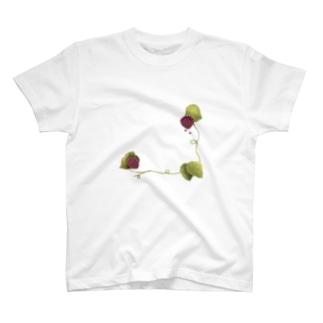 berrry T-shirts