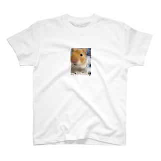 インリオピンハウス T-shirts