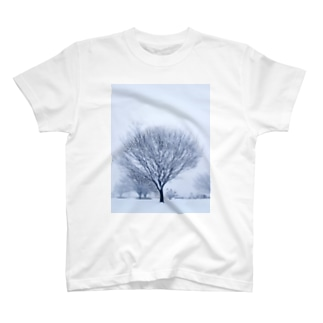 冬の木 T-shirts