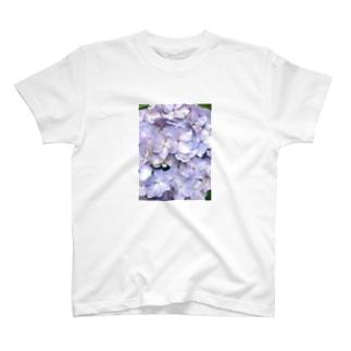 n̥ḁt̥s̥u̥m̥i̥の紫陽花の花言葉は移り気 T-shirts