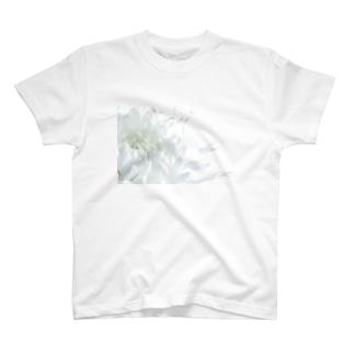 ほわいとふらわー T-shirts