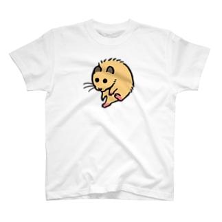 ゴルハム(キンクマ) T-shirts