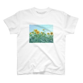 ひまわり畑Tシャツ T-shirts
