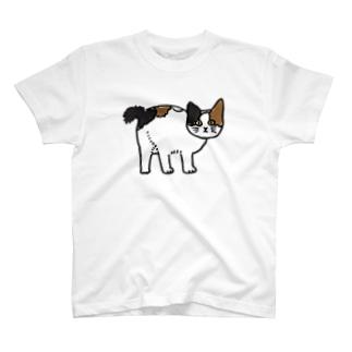 拾ってきた三毛猫 T-shirts