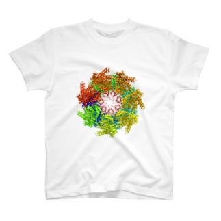 GroEL-GroES複合体 カラー T-shirts