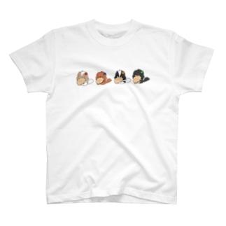 ビスケッティきゃばてぃ~しゃつ T-shirts