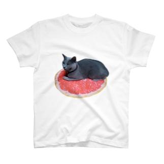 グレープフルーツのロシアンブルー乗せ T-shirts